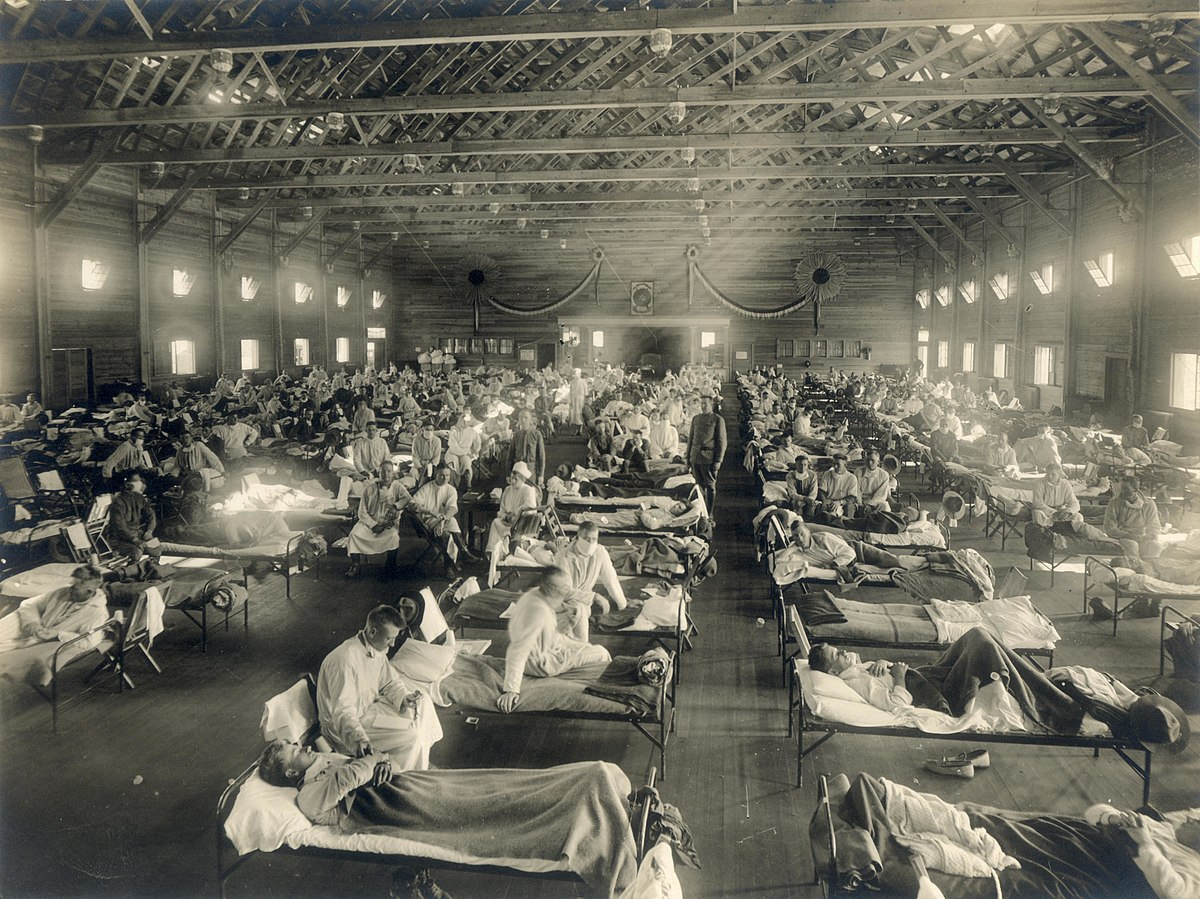 The 1918/1919 Influenza Pandemic: A Tale of Two Cities   What We Can Learn From the Past