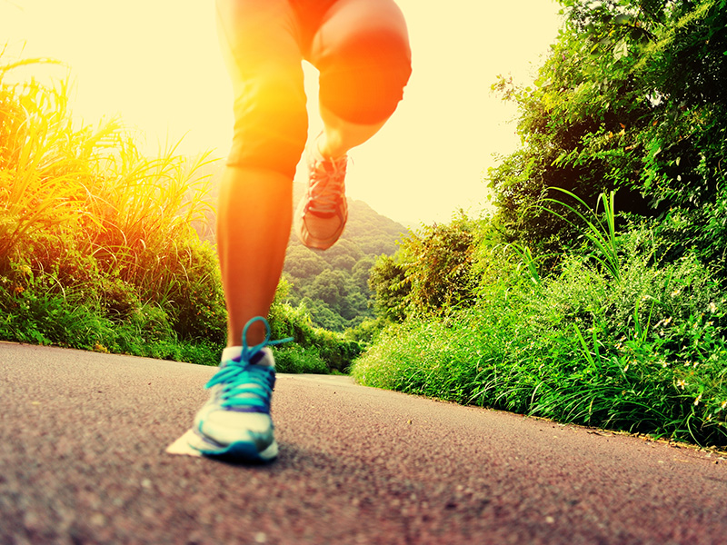 Top 10 Most Popular Running Trails in Pinellas County